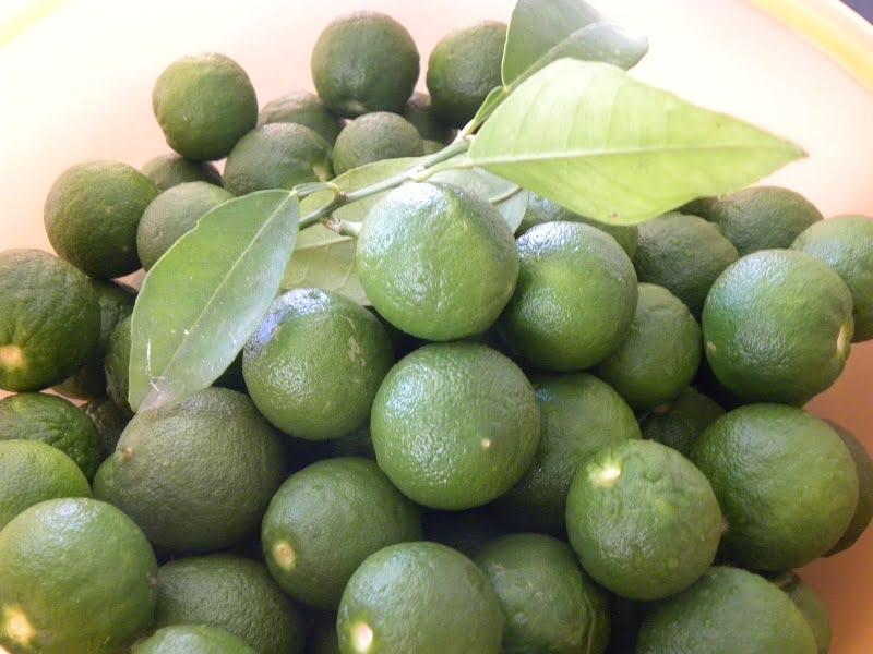 Kitromilaki - green bitter oranges image