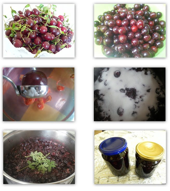 collage sour cherries