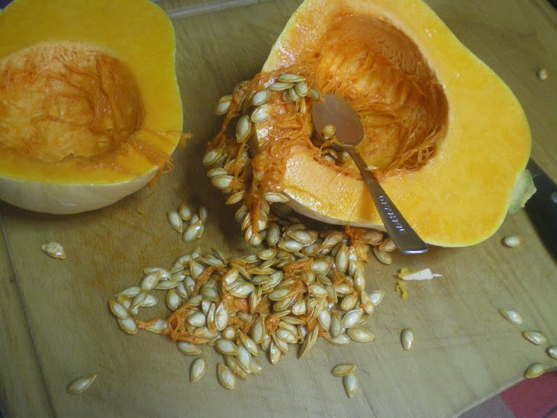 pumpkin or butternut squash image