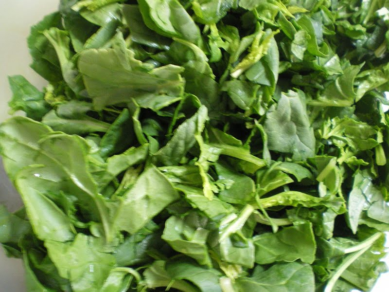 Fresh spinach image