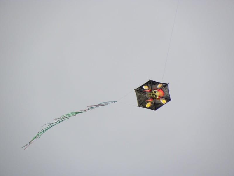 kite image