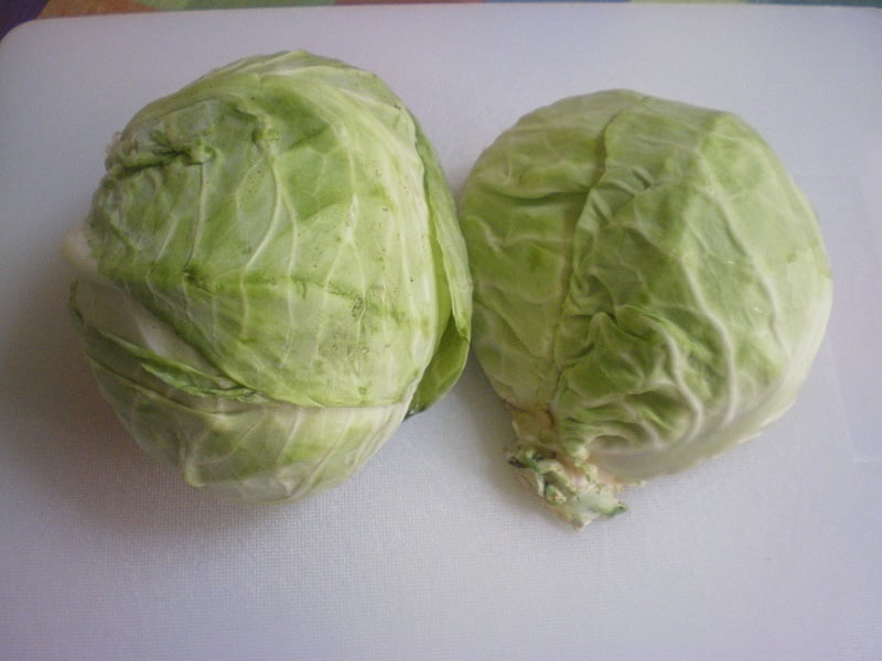 head of cabbage cut image