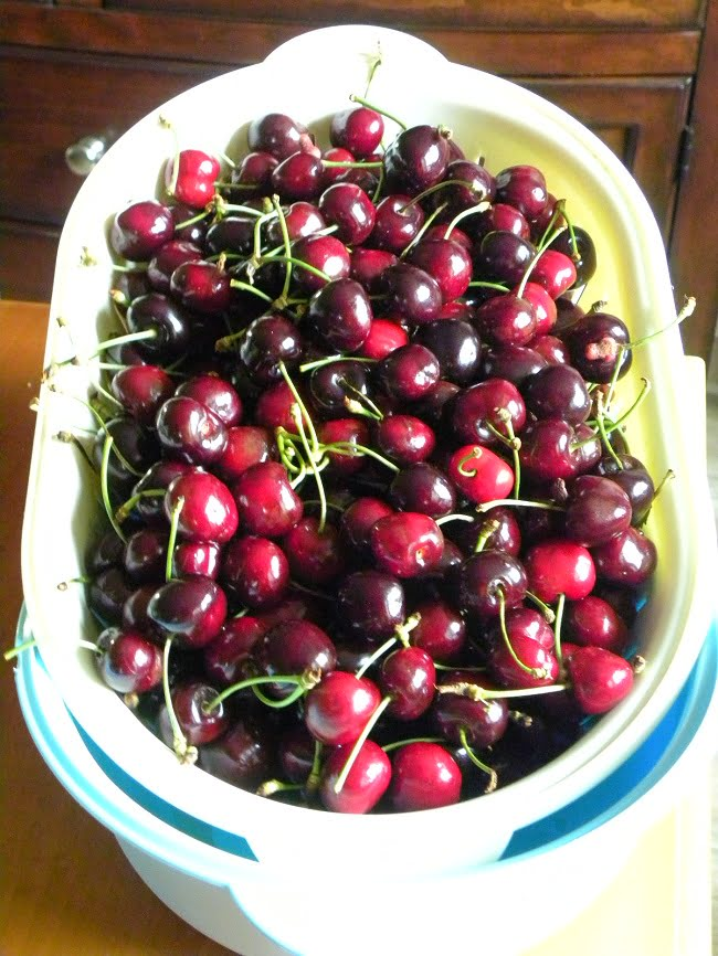 Cherries to be preserved image