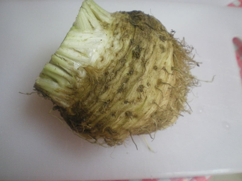 Celeriac root before cleaning image