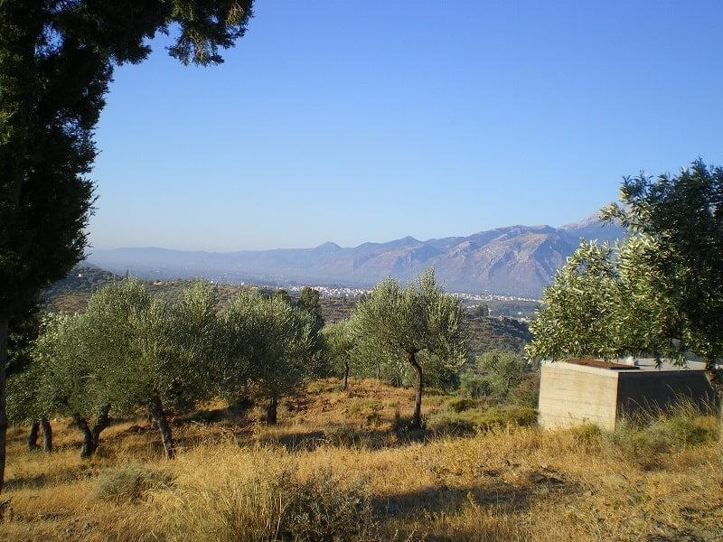 Mountain range of Taygettus image