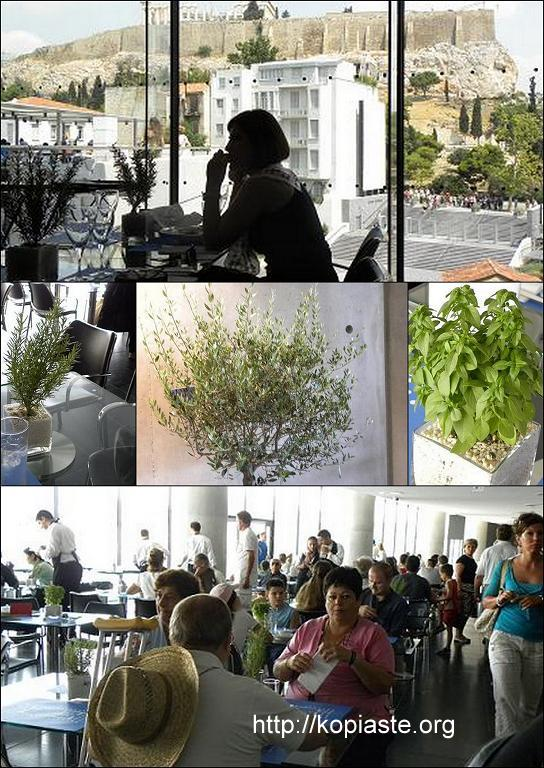 collage restaurant image