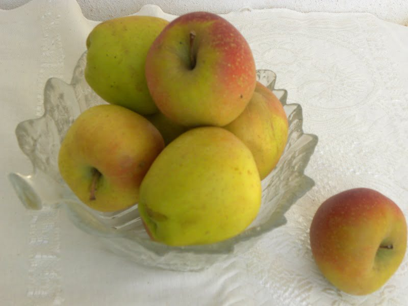 Mila Tripoleos Russet Apples image
