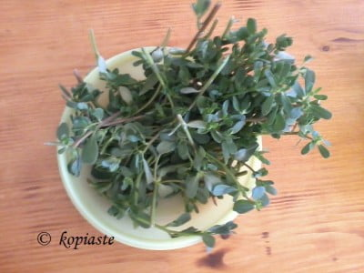 Purslane for pickling