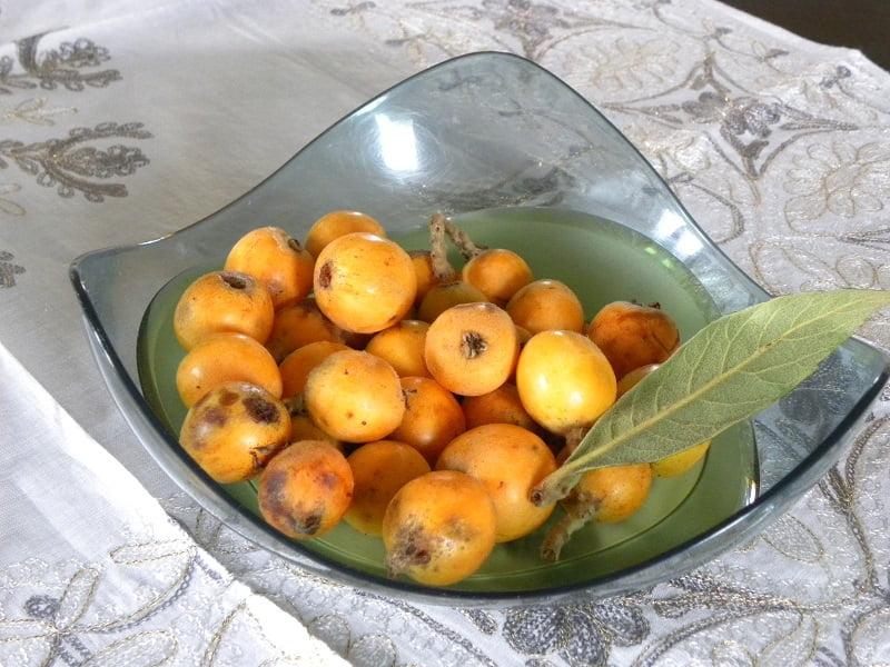 fresh loquats image