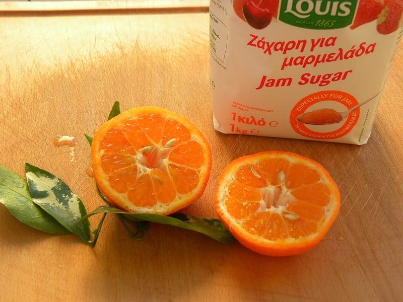 Mandarin and Jam sugar image