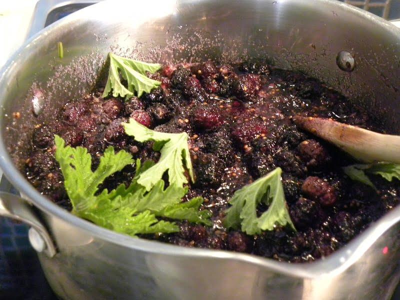 Mulberries with fragrant geranium image
