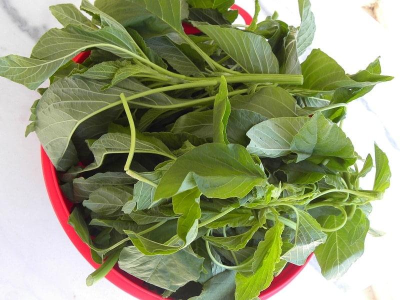 vlita greens image