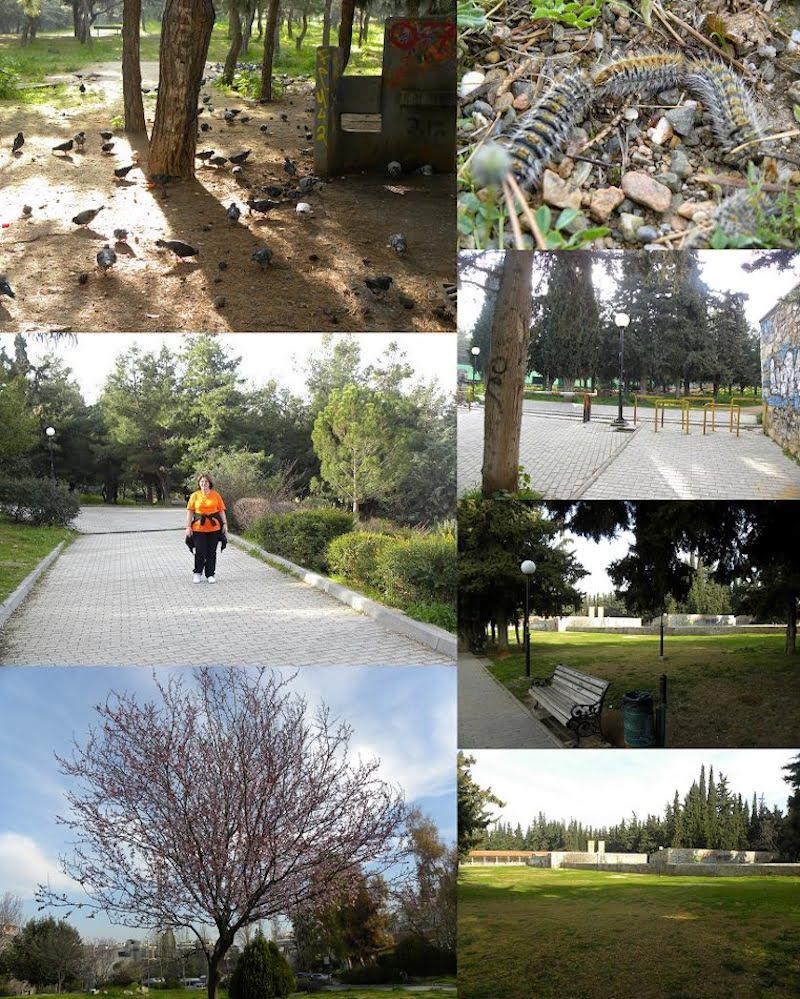 Collage Kessariani Park image