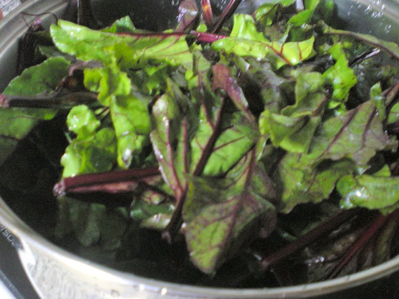 Boiling beet leaves image