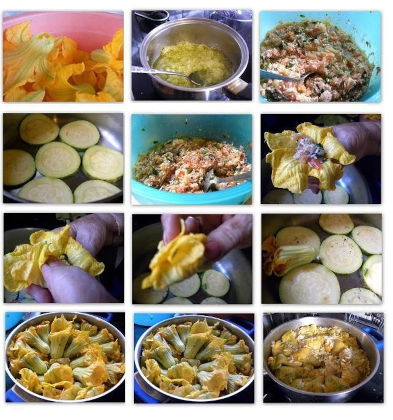 collage preparation of stuffed zucchini flowers kolokythoanthoi image