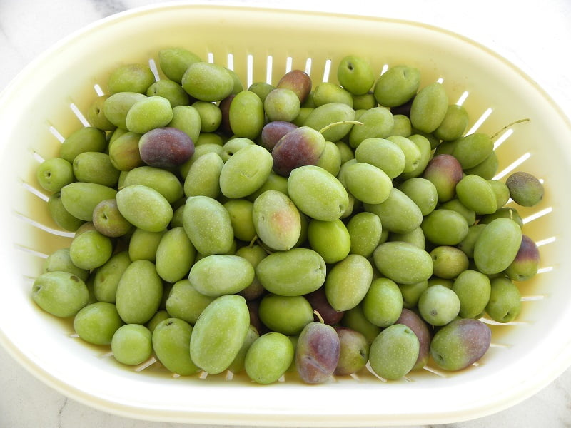 green huge olives image