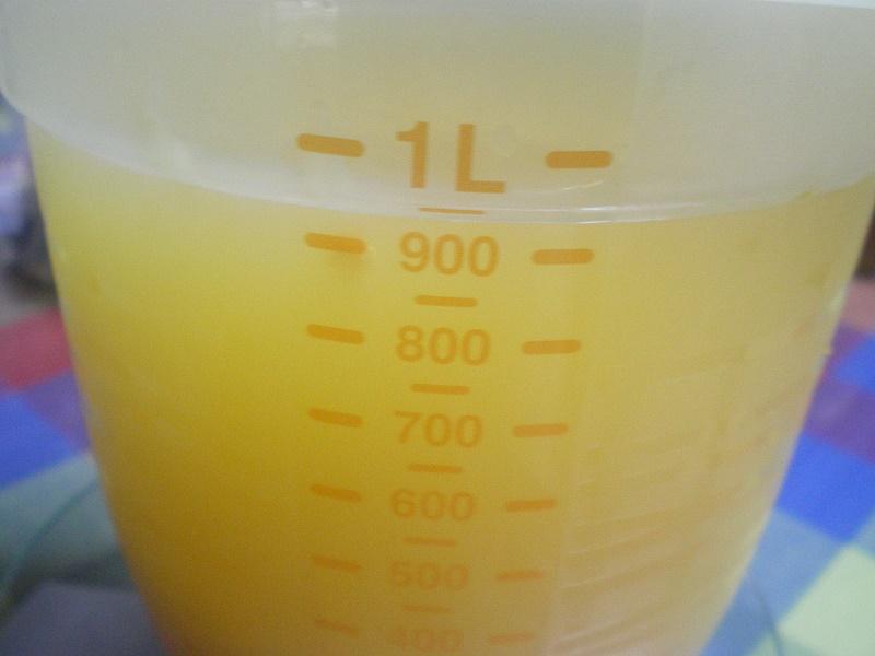 citrus juice image