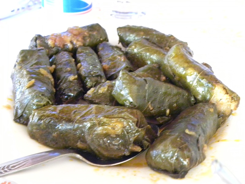 Cypriot dolmades in tomato sauce photo